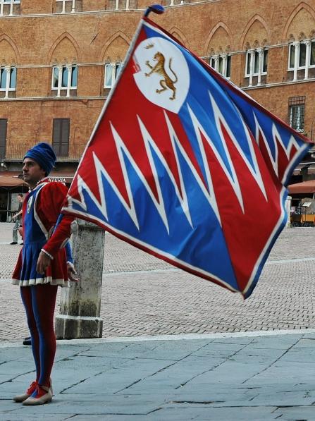 Flag_bearer_Pantera_Campo